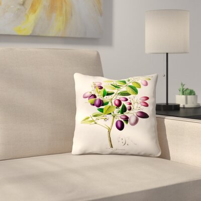 Flored Amerique Laprune Throw Pillow Size: 14 x 14