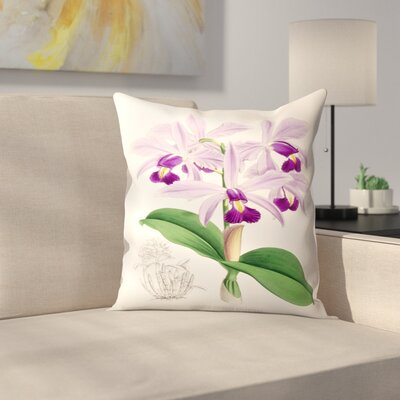 Fitch Orchid Cattleya Superba Splendens Throw Pillow Size: 18 x 18