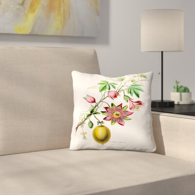 Flored Amerique Lapomme Grenadille Throw Pillow Size: 14 x 14