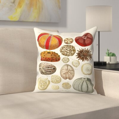 Sea Urchins Throw Pillow Size: 14 x 14
