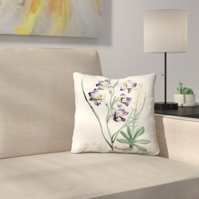 American Flora Stargrass Throw Pillow Size: 18 x 18