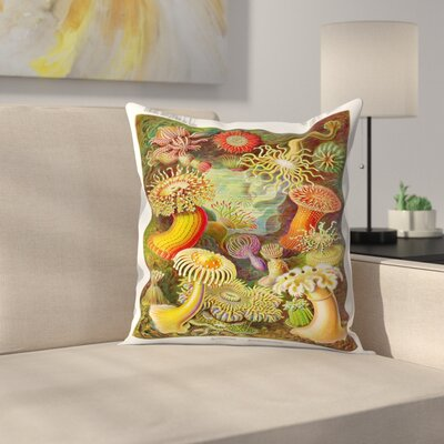 Haekcel Plate 49 Throw Pillow Size: 16 x 16