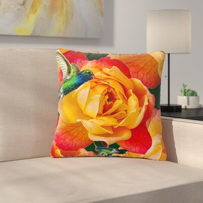 Shirlei Patricia Muniz Roses in Hummingbird Nature Outdoor Throw Pillow Size: 18 H x 18 W x 5 D