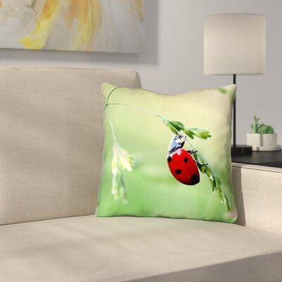 Duriel Square Outdoor Throw Pillow Size: 18 x 18