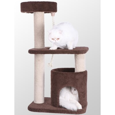 37 Premium Carpeted Cat Tree