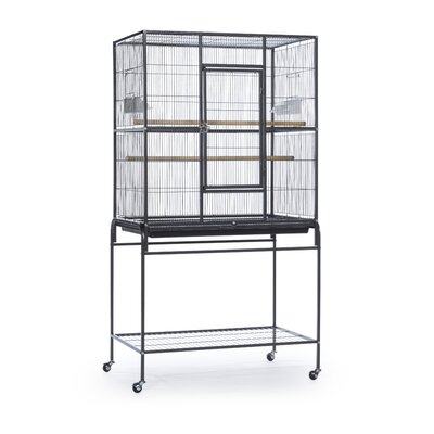 Pet Products Wrought Iron Flight Cage with Stand Color: Black