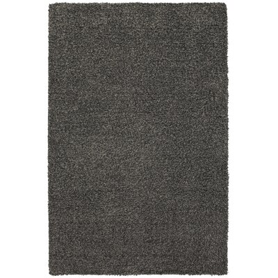 Adolphus Gray/Metal Night Area Rug Rug Size: Rectangle 26 x 38