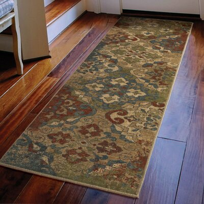 Bronstein Teawash Red Area Rug Rug Size: Runner 111 x 76