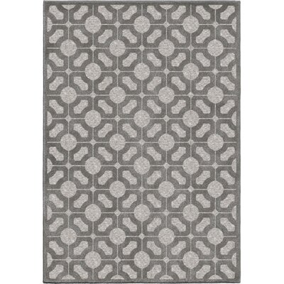 Dinsmore Gray Indoor/Outdoor Area Rug Rug Size: Rectangle 53 x 76