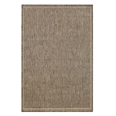 Brown Indoor/Outdoor Area Rug