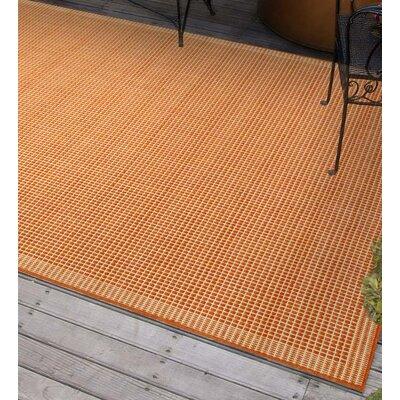 Terra Cotta Indoor/Outdoor Area Rug