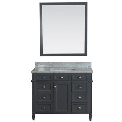 Costillo 42 Single Bathroom Vanity Set with Mirror Base Finish: Gray