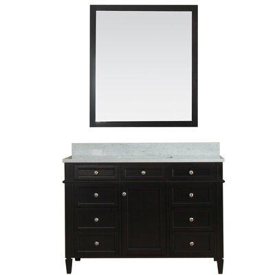 Costillo 48 Single Bathroom Vanity Set with Mirror Base Finish: Espresso
