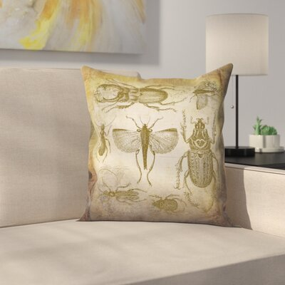 Beetle Vintage Throw Pillow Size: 14 x 14