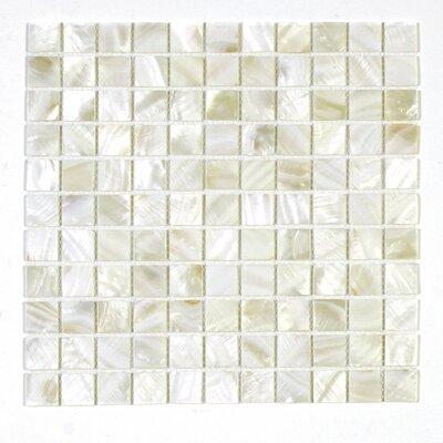 1 x 1 Seashell Mosaic Tile in Maikai