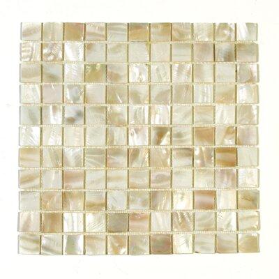 1 x 1 Seashell Mosaic Tile in Aloha