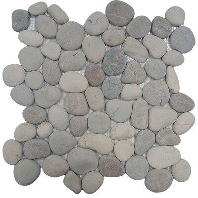 River Rock Random Sized Natural Stone Pebble Tile in Terrene Blend