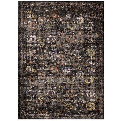 Heitzman Black/Gray Area Rug Rug Size: Rectangle 4 x 6