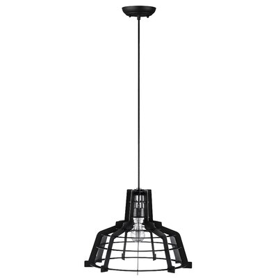 Dunnigan 1-Light Mini Pendant Finish: Black