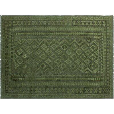One-of-a-Kind Dinardo Hand-Woven Wool Green Area Rug
