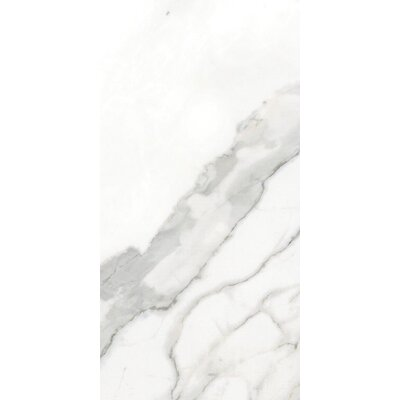 Arya Beyaz 12 x 24 Porcelain Field Tile in Polished Rectified