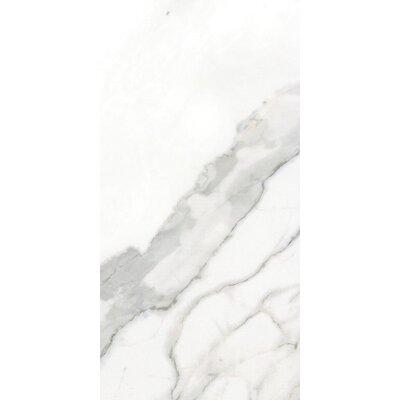 Arya Beyaz 12 x 24 Porcelain Field Tile in Polished Rectified