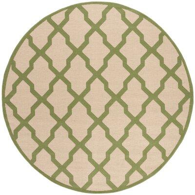 Callender Cream/Olive Area Rug Rug Size: Round 67