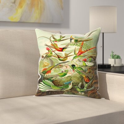 Haeckel Plate 99 Throw Pillow Size: 18 x 18