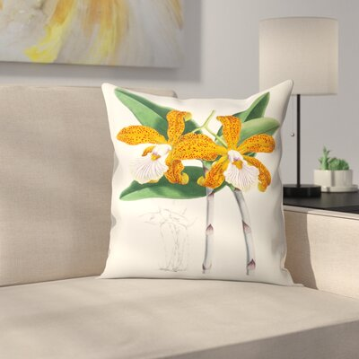 Fitch Orchid Cattleya Velutina2 Throw Pillow Size: 16 x 16