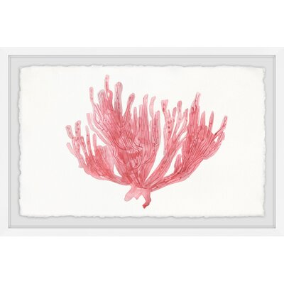 'Lone Coral' Framed Watercolor Painting Print