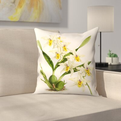 Fitch Orchid Odontoglossum Alexandrae Flaveolum Throw Pillow Size: 14 x 14