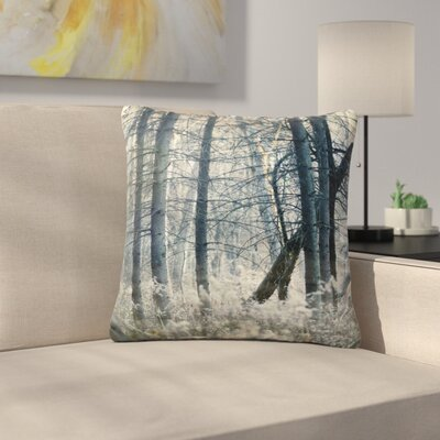 Out of the Woods Nature Photography Outdoor Throw Pillow Size: 18 H x 18 W x 5 D
