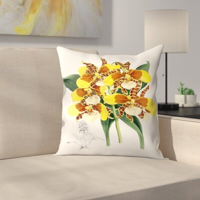 Fitch Orchid Odontoglossum Williamsianum Throw Pillow Size: 18 x 18