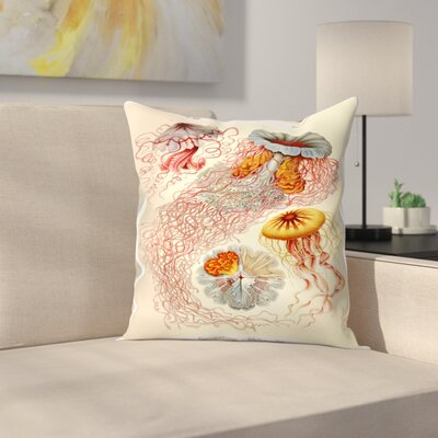 Haeckel Plate 8 Throw Pillow Size: 14 x 14