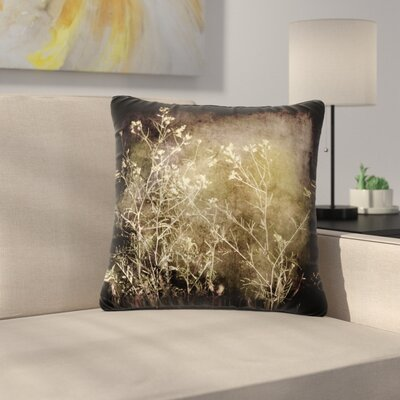 Sylvia Coomes Wild Darkness Photography Outdoor Throw Pillow Size: 16 H x 16 W x 5 D