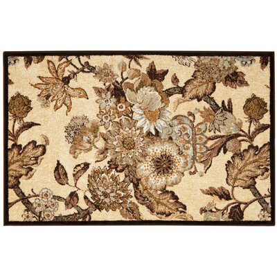 Great Expectation Birch Area Rug Rug Size: Rectangle 2 x 3
