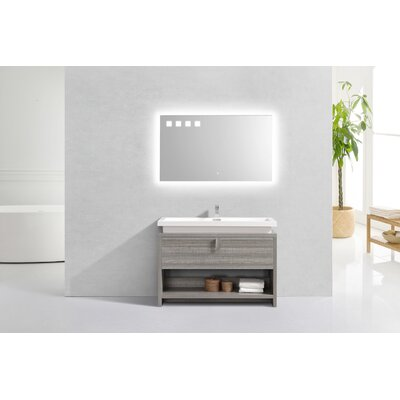 Politte 48 Single Bathroom Vanity Set