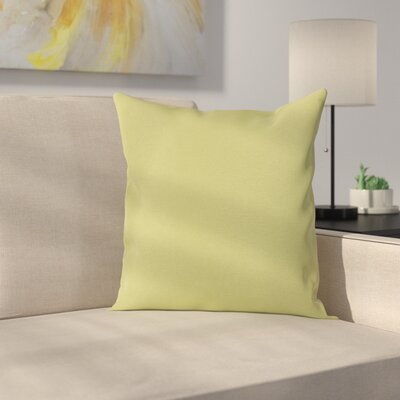 Ryele Outdoor Throw Pillow Color: Peridot