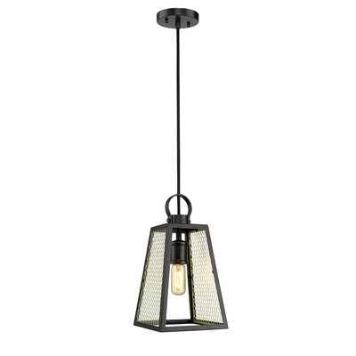 Diedrich 1-Light Mini Pendant Shade Color: Satin Brass