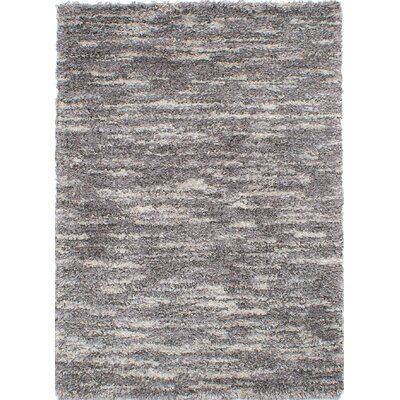 Lozoya Dark Gray Area Rug