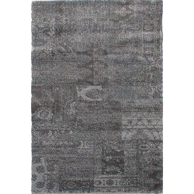 Decarlo Gray Area Rug Rug Size: Rectangle 45 x 67