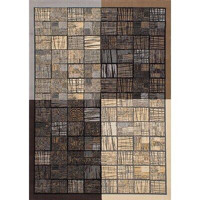 Norfleet Dark Brown/Ivory Area Rug