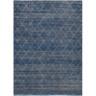 Duckworth Dark Blue/Light Gray Area Rug