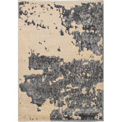 Decarlo Beige/Gray Area Rug