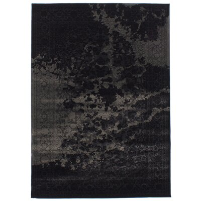 Duchene Black/Gray Area Rug