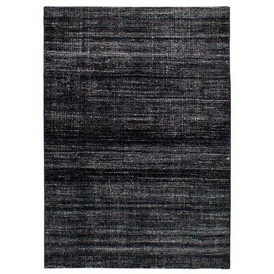 Duckworth Black/Light Gray Area Rug