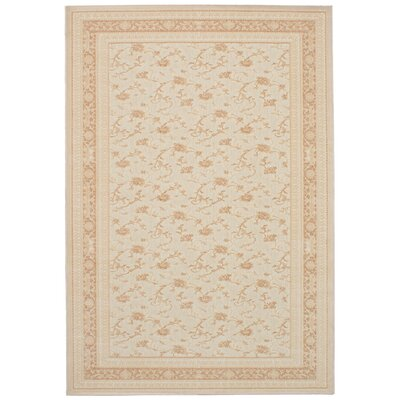 Skorupka Cream Area Rug