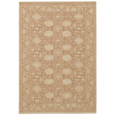 Skorupka Brown Area Rug