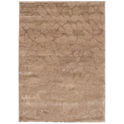Corbett Brown Area Rug