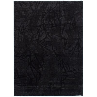 Purmerend Black Area Rug Rug Size: Rectangle 55 x 78